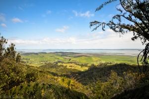 Vue depuis le lookout du Mont Auckland