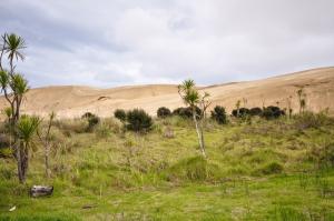 Ouf, on a quand même UNE photo des dunes sous l'coude !
