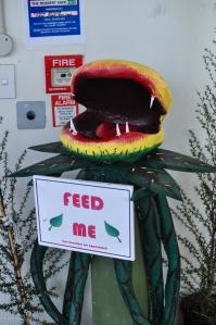 Donation pour Botanica, où admirer des plantes tropicales, située dans le Cafler Park