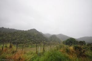 WhanganuiRiverRd-003