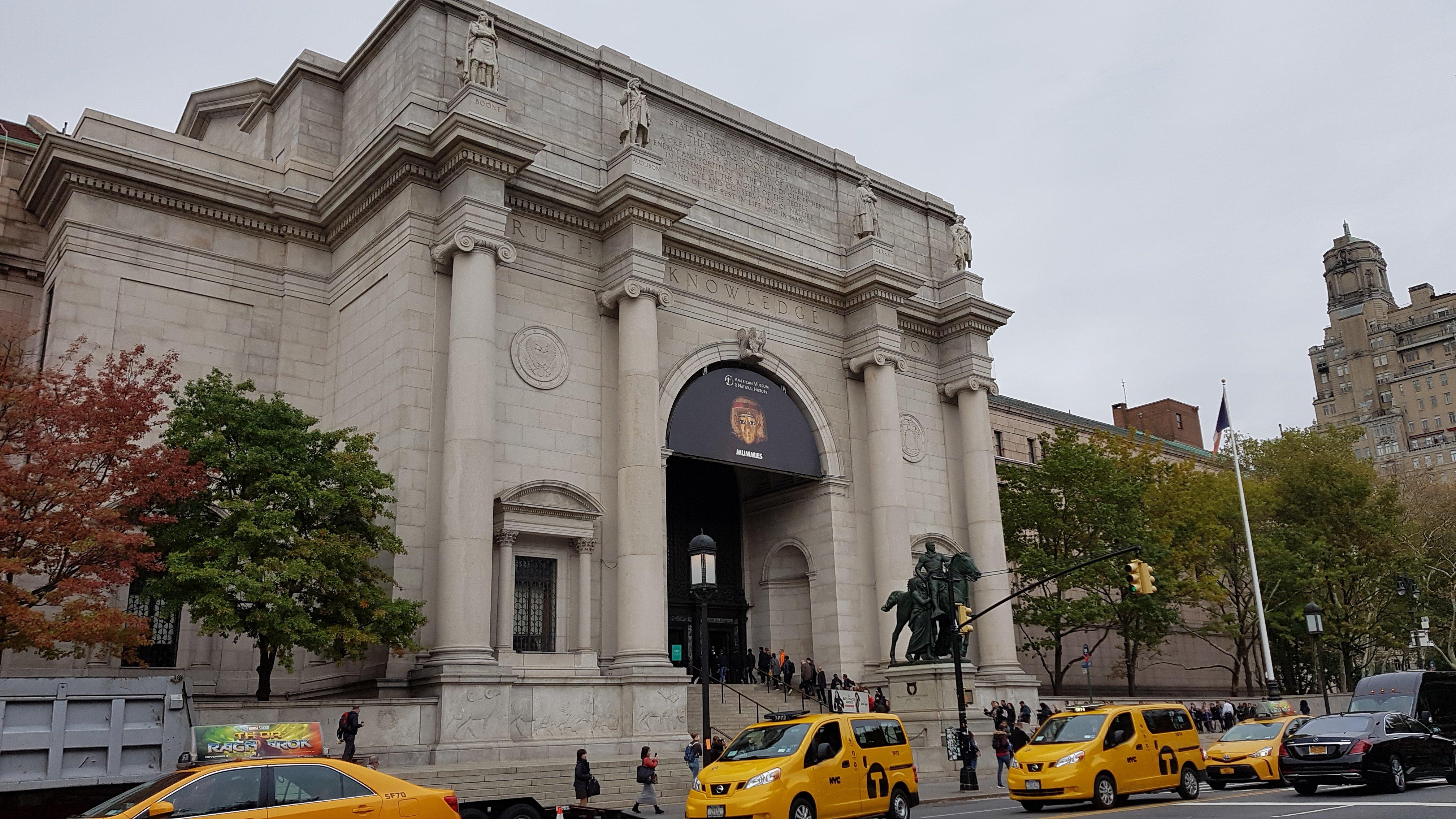 mattetjuju-2017-NYC-museumhistoirenaturelle